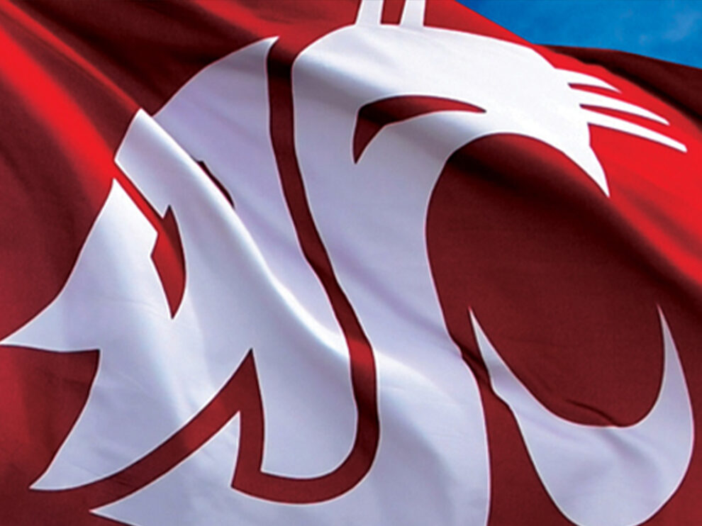 A close-up of a flag with the WSU logo on it.