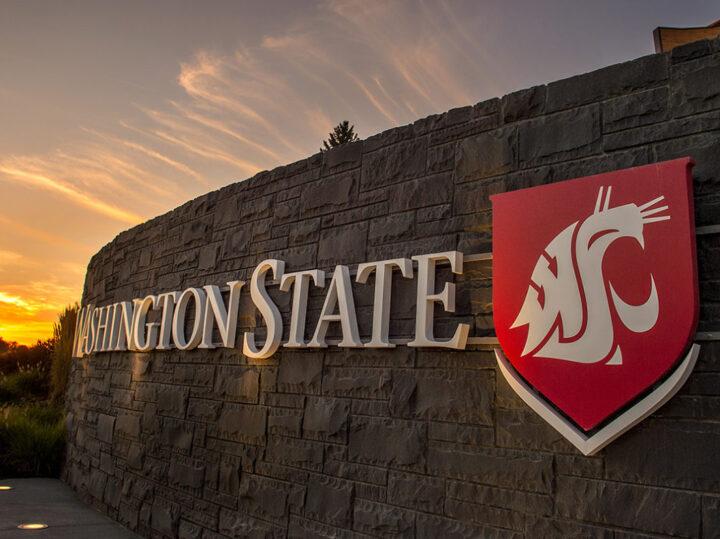 A Washington State University sign with logo an a brick wall at sunset.