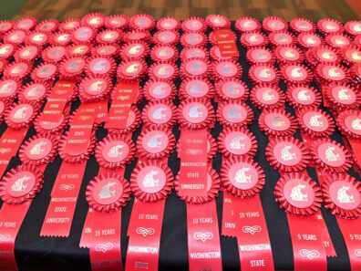Table covered with many crimson colored award ribbons.